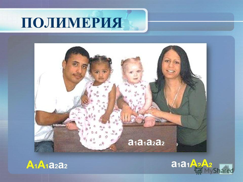А1А1 а 2 а 2А1А1 а 2 а 2 а 1 а 1А2А2 а 1 а 1А2А2 а 1 а 1 а 2 а 2 а 1 а 1 а 2 а 2