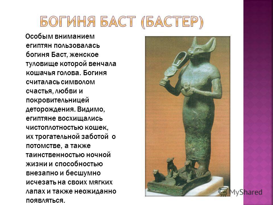 Особым вниманием египтян пользовалась богиня Баст, женское туловище которой венчала кошачья голова. Богиня считалась символом счастья, любви и покровительницей деторождения. Видимо, египтяне восхищались чистоплотностью кошек, их трогательной заботой