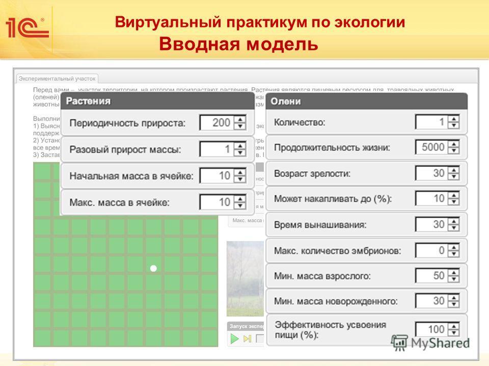 Виртуальный практикум по экологии Вводная модель
