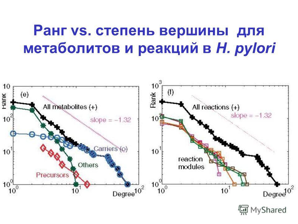 Ранг vs. степень вершины для метаболитов и реакций в H. pylori