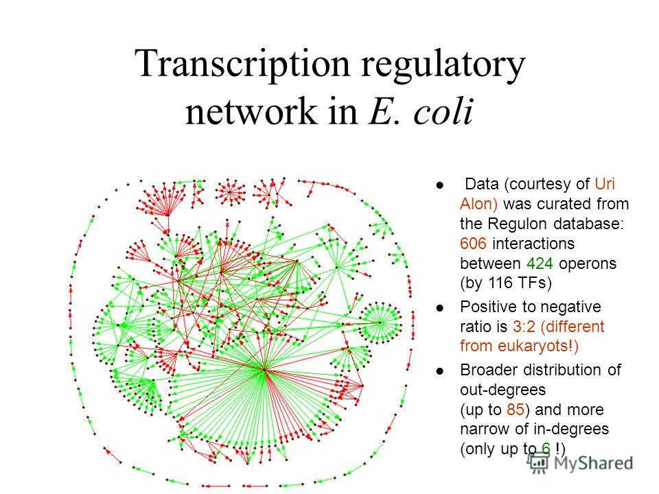 Transcription regulatory network in E. coli Data (courtesy of Uri Alon) was curated from the Regulon database: 606 interactions between 424 operons (by 116 TFs) Positive to negative ratio is 3:2 (different from eukaryots!) Broader distribution of out