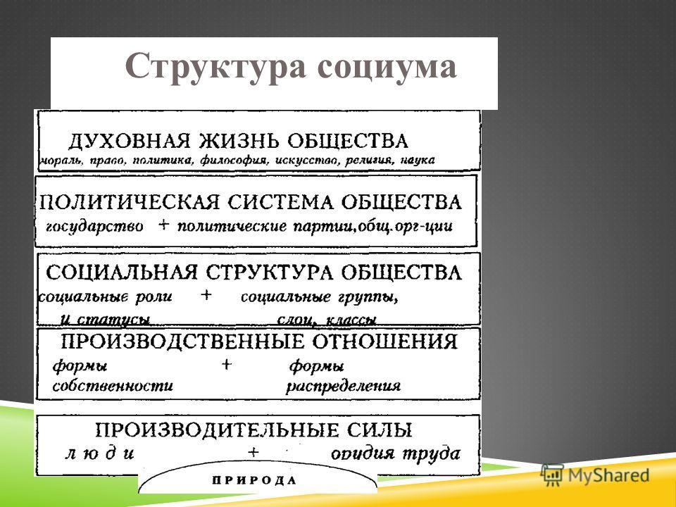 Структура социума