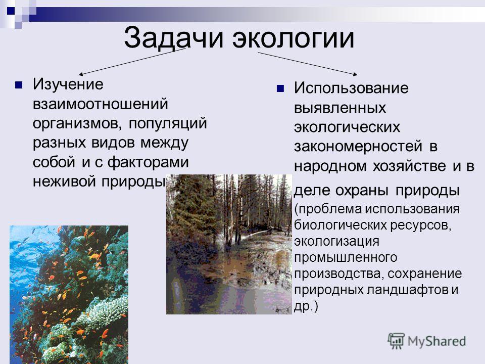 Задачи экологии Изучение взаимоотношений организмов, популяций разных видов между собой и с факторами неживой природы Использование выявленных экологических закономерностей в народном хозяйстве и в деле охраны природы (проблема использования биологич