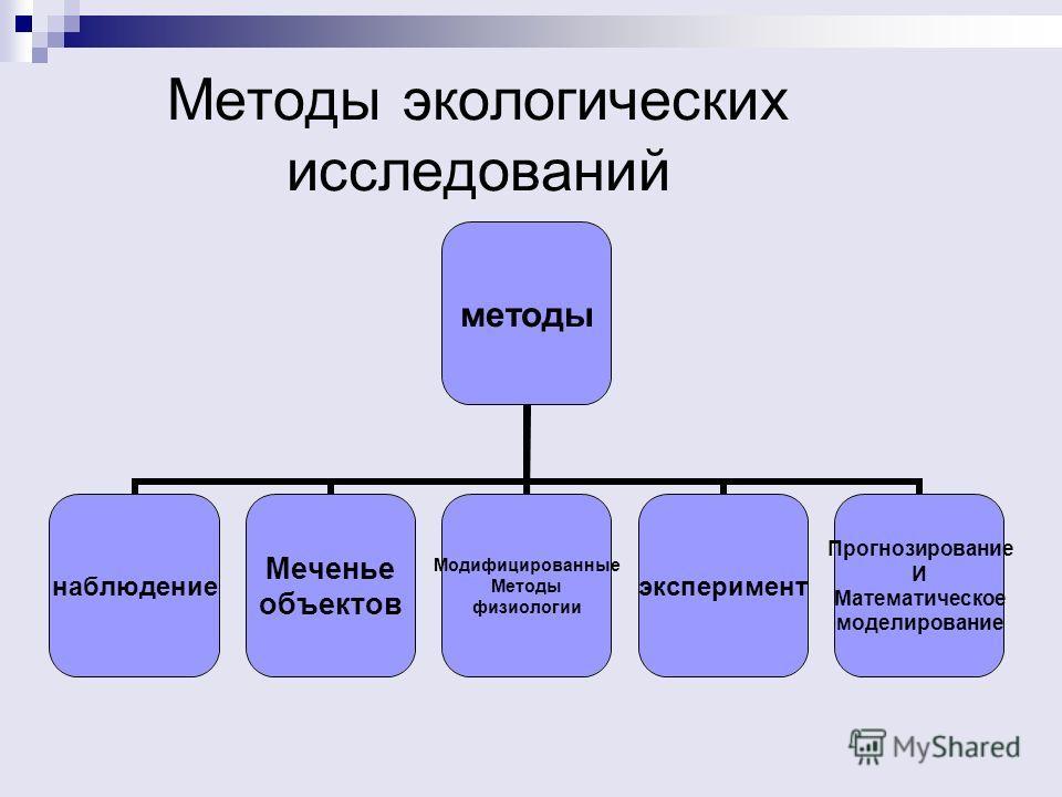 Методы экологических исследований методы наблюдение Меченье объектов Модифицированные Методы физиологии эксперимент Прогнозирование И Математическое моделирование