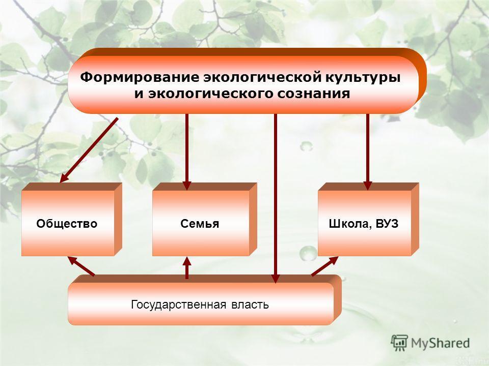 Формирование экологической культуры и экологического сознания Общество СемьяШкола, ВУЗ Государственная власть