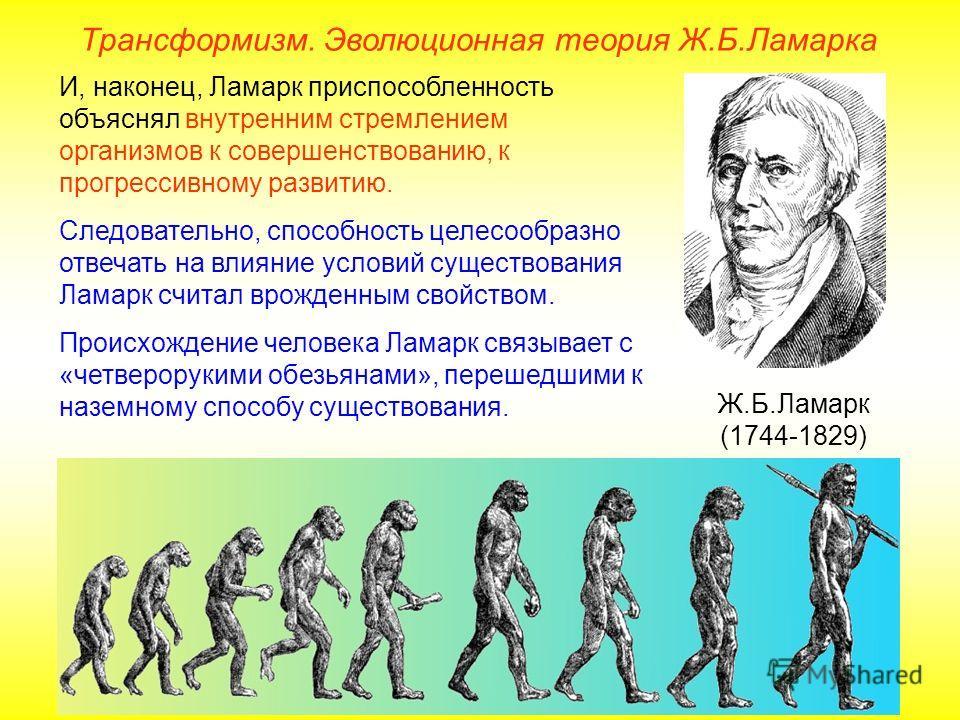 Трансформизм. Эволюционная теория Ж.Б.Ламарка Ж.Б.Ламарк (1744-1829) И, наконец, Ламарк приспособленность объяснял внутренним стремлением организмов к совершенствованию, к прогрессивному развитию. Следовательно, способность целесообразно отвечать на