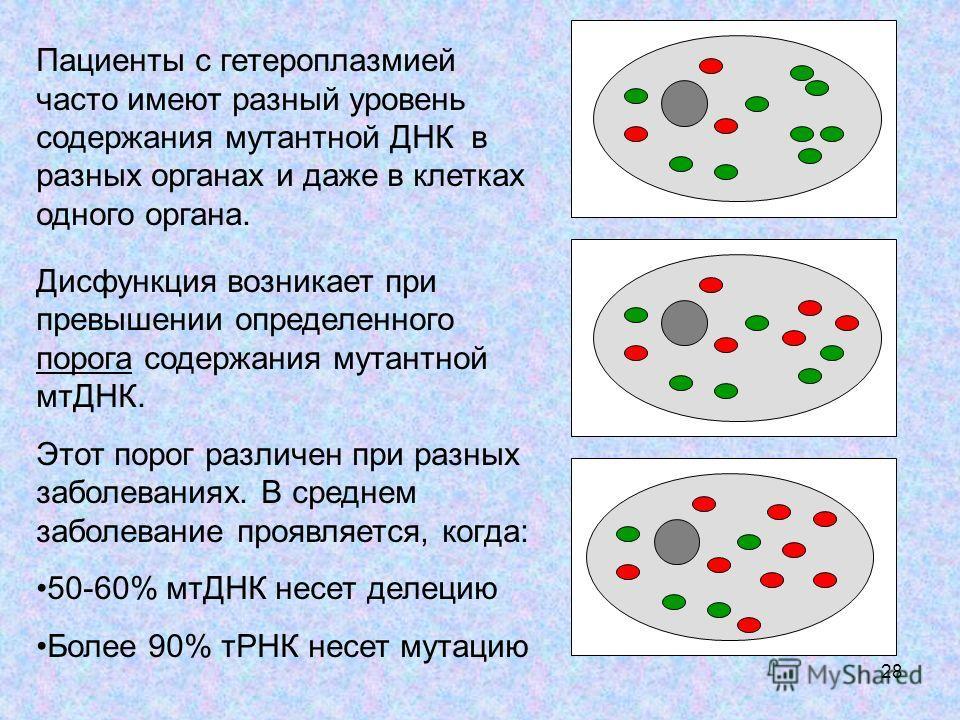 28 Пациенты с гетероплазмией часто имеют разный уровень содержания мутантной ДНК в разных органах и даже в клетках одного органа. Дисфункция возникает при превышении определенного порога содержания мутантной мтДНК. Этот порог различен при разных забо