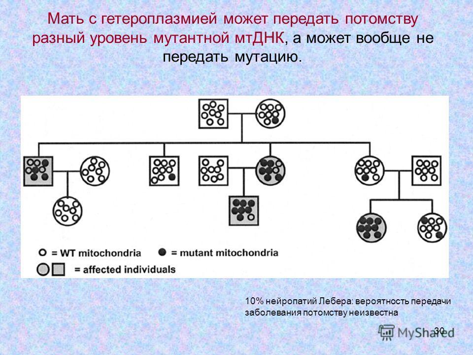 30 Мать с гетероплазмией может передать потомству разный уровень мутантной мтДНК, а может вообще не передать мутацию. 10% нейропатий Лебера: вероятность передачи заболевания потомству неизвестна