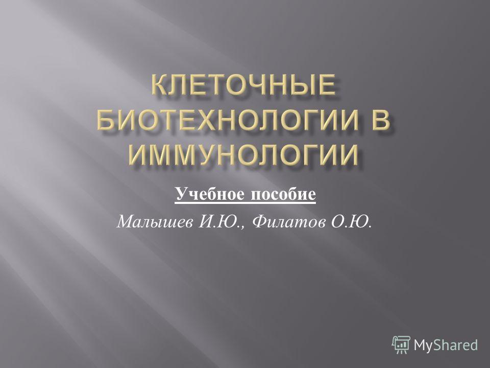 Учебное пособие Малышев И. Ю., Филатов О. Ю.