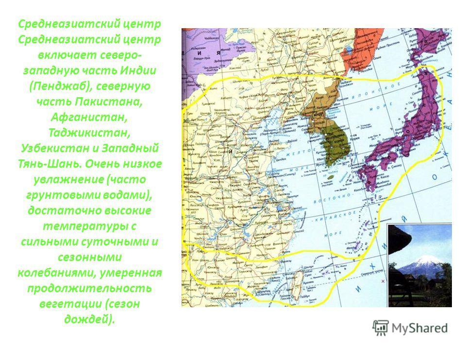 Среднеазиатский центр Среднеазиатский центр включает северо- западную часть Индии (Пенджаб), северную часть Пакистана, Афганистан, Таджикистан, Узбекистан и Западный Тянь-Шань. Очень низкое увлажнение (часто грунтовыми водами), достаточно высокие тем