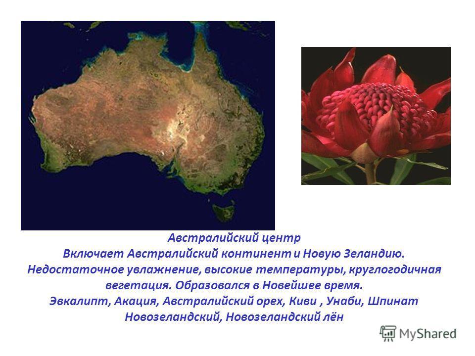 Австралийский центр Включает Австралийский континент и Новую Зеландию. Недостаточное увлажнение, высокие температуры, круглогодичная вегетация. Образовался в Новейшее время. Эвкалипт, Акация, Австралийский орех, Киви, Унаби, Шпинат Новозеландский, Но