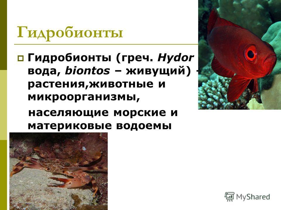 Гидробионты Гидробионты (греч. Hydor – вода, biontos – живущий) – растения,животные и микроорганизмы, населяющие морские и материковые водоемы