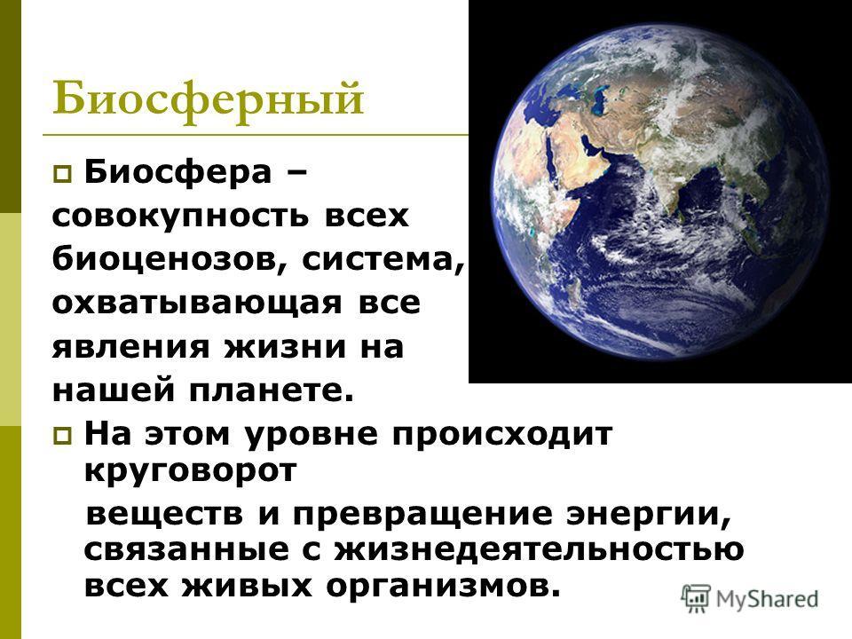 Биосферный Биосфера – совокупность всех биоценозов, система, охватывающая все явления жизни на нашей планете. На этом уровне происходит круговорот веществ и превращение энергии, связанные с жизнедеятельностью всех живых организмов.