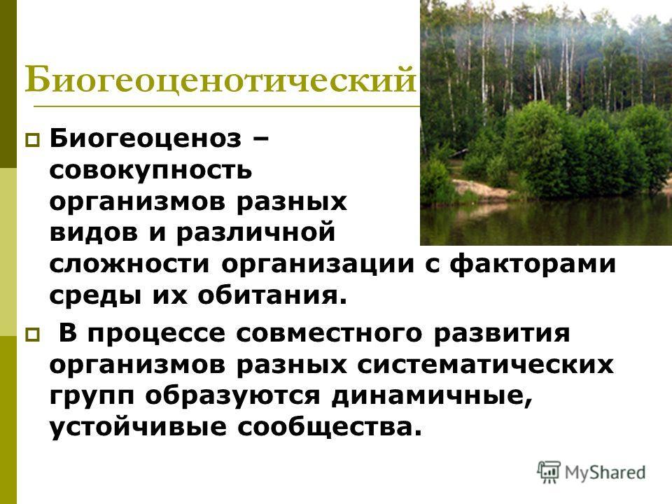 Биогеоценотический Биогеоценоз – совокупность организмов разных видов и различной сложности организации с факторами среды их обитания. В процессе совместного развития организмов разных систематических групп образуются динамичные, устойчивые сообществ