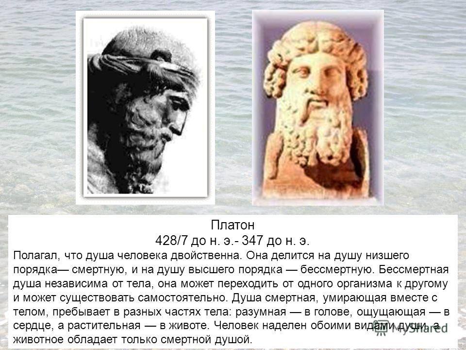 Платон 428/7 до н. э.- 347 до н. э. Полагал, что душа человека двойственна. Она делится на душу низшего порядка смертную, и на душу высшего порядка бессмертную. Бессмертная душа независима от тела, она может переходить от одного организма к другому и