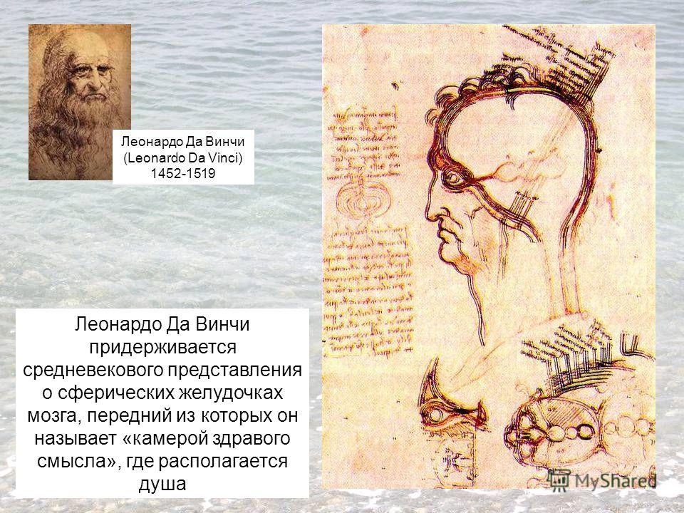 Леонардо Да Винчи придерживается средневекового представления о сферических желудочках мозга, передний из которых он называет «камерой здравого смысла», где располагается душа Леонардо Да Винчи (Leonardo Da Vinci) 1452-1519