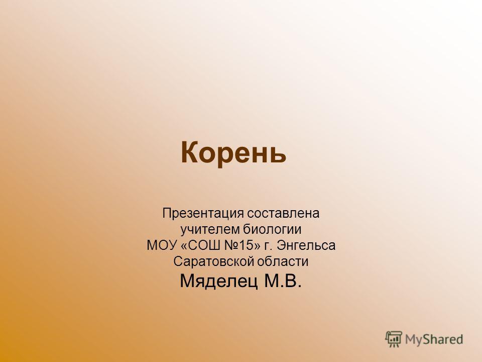 Корень Презентация составлена учителем биологии МОУ «СОШ 15» г. Энгельса Саратовской области Мяделец М.В.