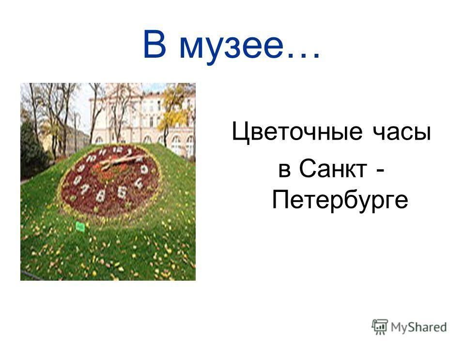 В музее… Цветочные часы в Санкт - Петербурге