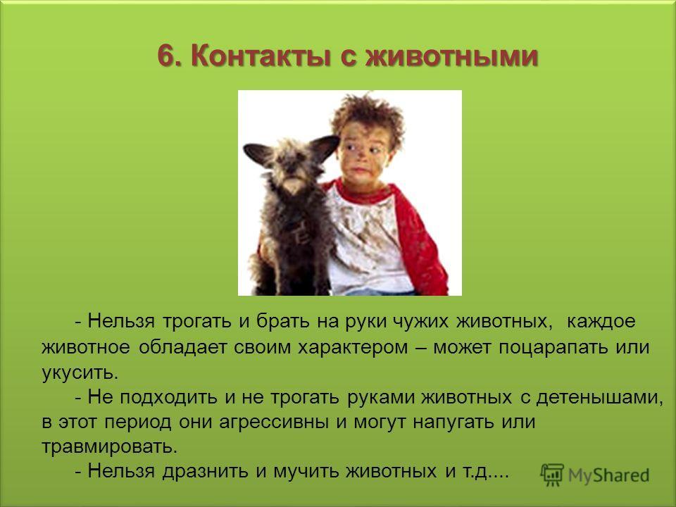 6. Контакты с животными 6. Контакты с животными - Нельзя трогать и брать на руки чужих животных, каждое животное обладает своим характером – может поцарапать или укусить. - Не подходить и не трогать руками животных с детенышами, в этот период они агр