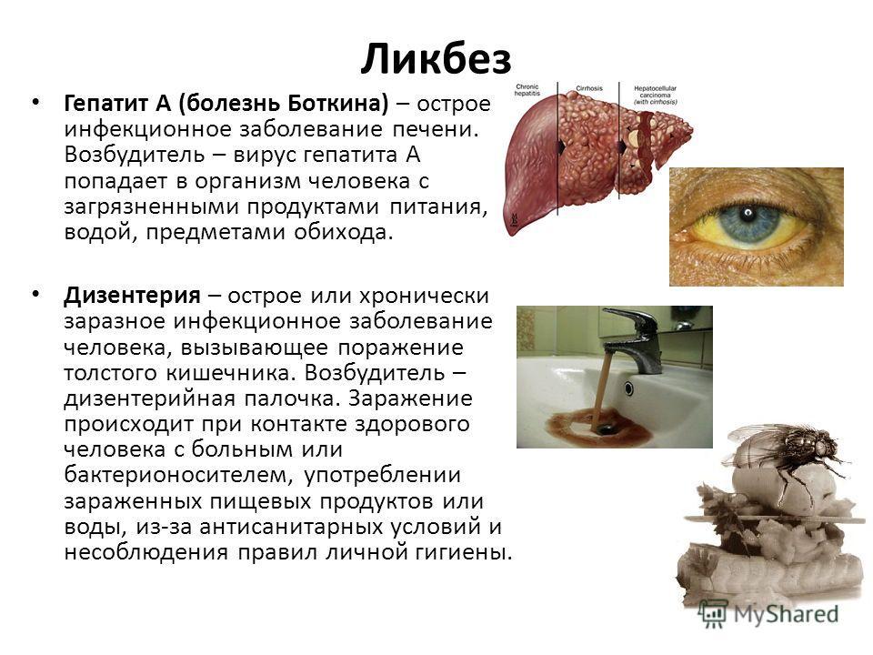 Ликбез Гепатит А (болезнь Боткина) – острое инфекционное заболевание печени. Возбудитель – вирус гепатита А попадает в организм человека с загрязненными продуктами питания, водой, предметами обихода. Дизентерия – острое или хронически заразное инфекц
