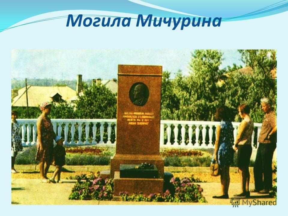 Могила Мичурина