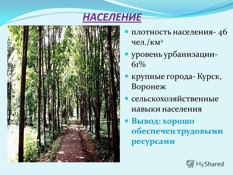 НАСЕЛЕНИЕ плотность населения- 46 чел./км 2 уровень урбанизации- 61% крупные города- Курск, Воронеж сельскохозяйственные навыки населения Вывод: хорошо обеспечен трудовыми ресурсами