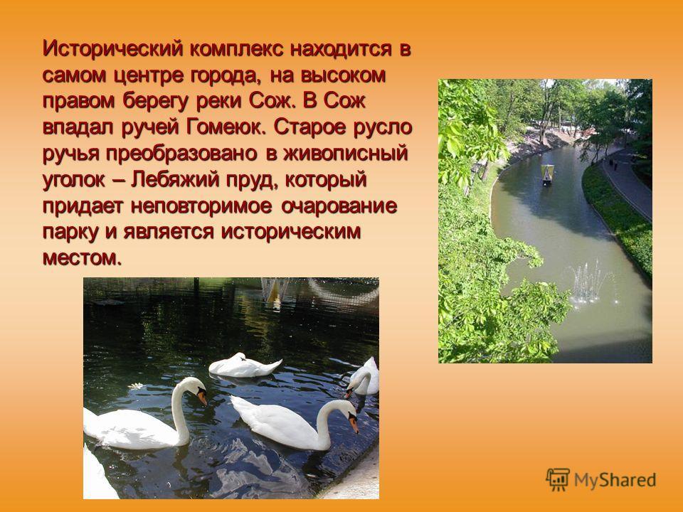 Исторический комплекс находится в самом центре города, на высоком правом берегу реки Сож. В Сож впадал ручей Гомеюк. Старое русло ручья преобразовано в живописный уголок – Лебяжий пруд, который придает неповторимое очарование парку и является историч