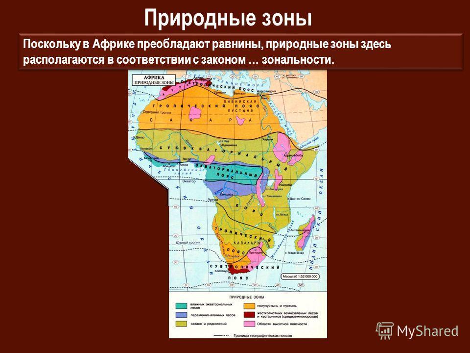 Природные зоны Поскольку в Африке преобладают равнины, природные зоны здесь располагаются в соответствии с законом … зональности.