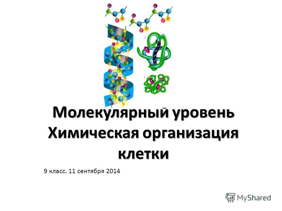 Молекулярный уровень Химическая организация клетки 9 класс. 11 сентября 2014