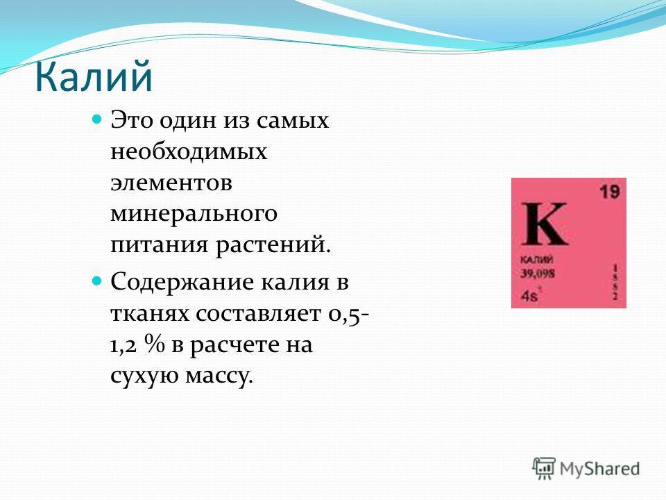 Калий Это один из самых необходимых элементов минерального питания растений. Содержание калия в тканях составляет 0,5- 1,2 % в расчете на сухую массу.