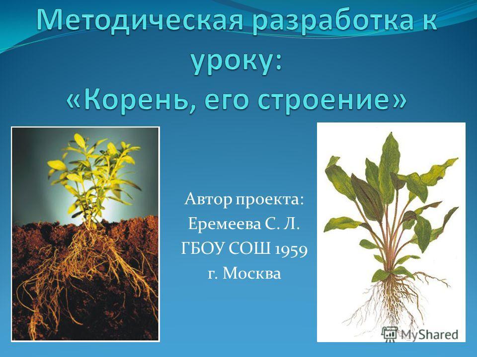 Автор проекта: Еремеева С. Л. ГБОУ СОШ 1959 г. Москва