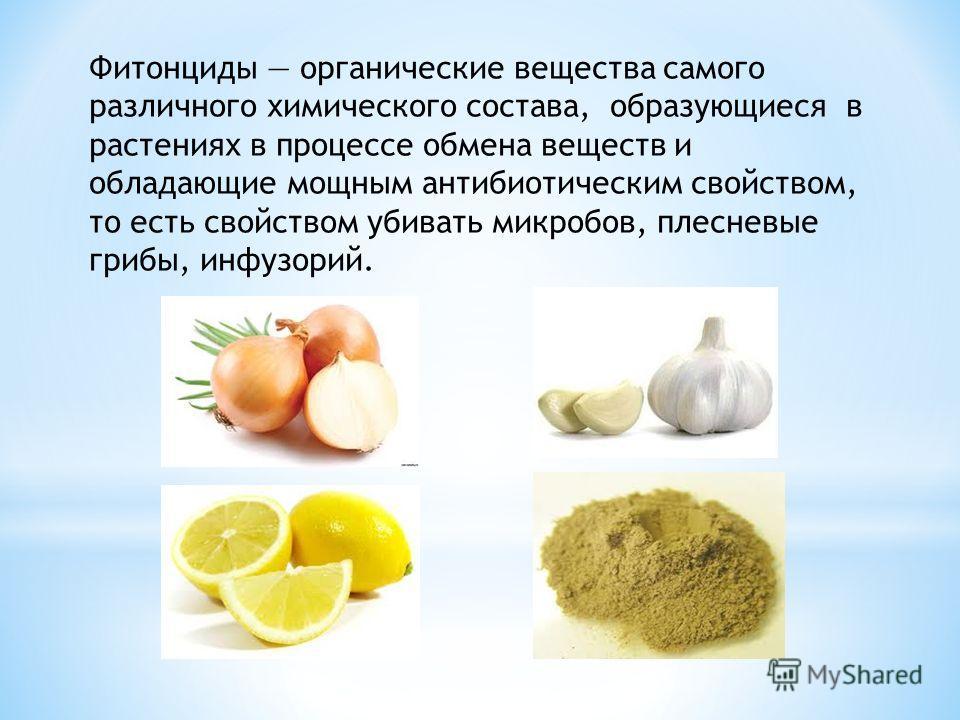 Фитонциды органические вещества самого различного химического состава, образующиеся в растениях в процессе обмена веществ и обладающие мощным антибиотическим свойством, то есть свойством убивать микробов, плесневые грибы, инфузорий.