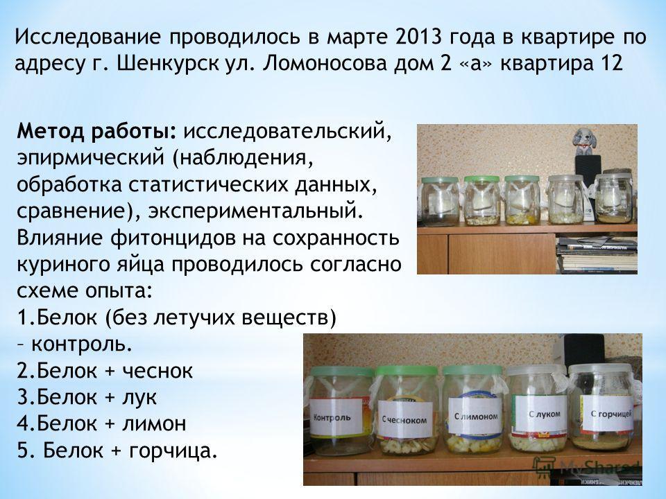 Метод работы: исследовательский, эмпирический (наблюдения, обработка статистических данных, сравнение), экспериментальный. Влияние фитонцидов на сохранность куриного яйца проводилось согласно схеме опыта: 1. Белок (без летучих веществ) – контроль. 2.
