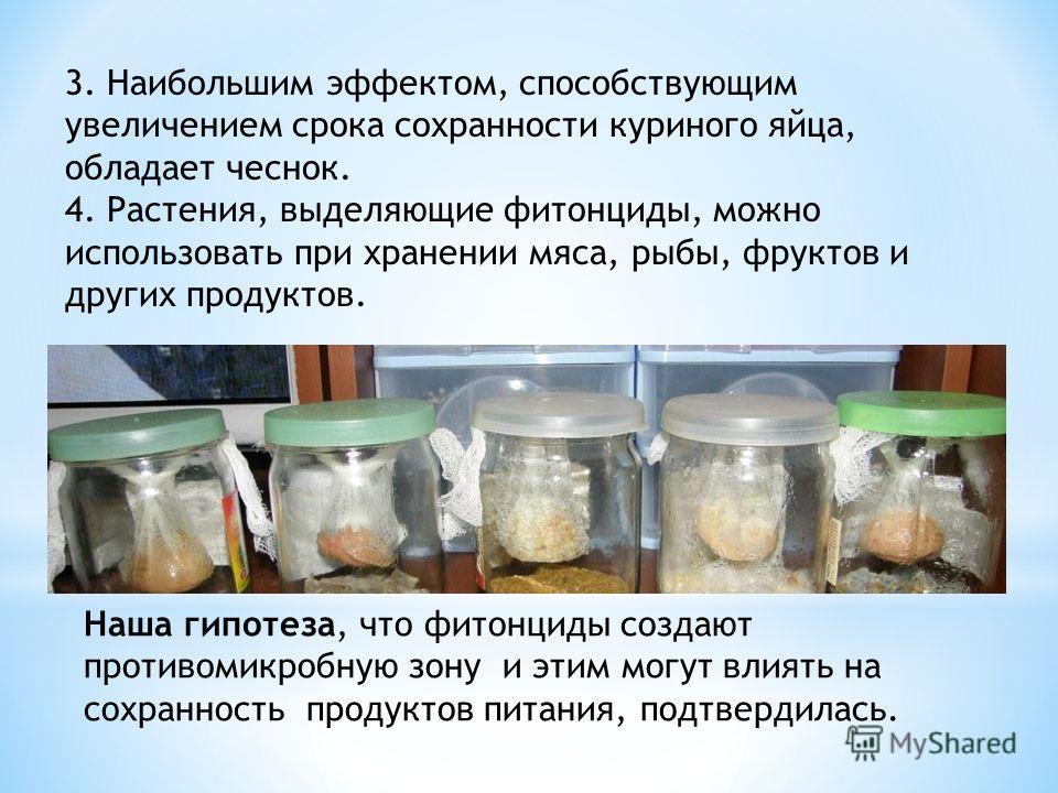 Наша гипотеза, что фитонциды создают противомикробную зону и этим могут влиять на сохранность продуктов питания, подтвердилась. 3. Наибольшим эффектом, способствующим увеличением срока сохранности куриного яйца, обладает чеснок. 4. Растения, выделяющ