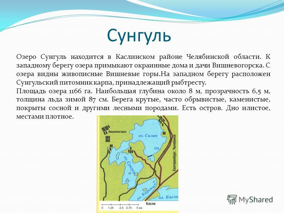Сунгуль Озеро Сунгуль находится в Каслинском районе Челябинской области. К западному берегу озера примыкают окраинные дома и дачи Вишневогорска. С озера видны живописные Вишневые горы.На западном берегу расположен Сунгульcкий питомник карпа, принадле