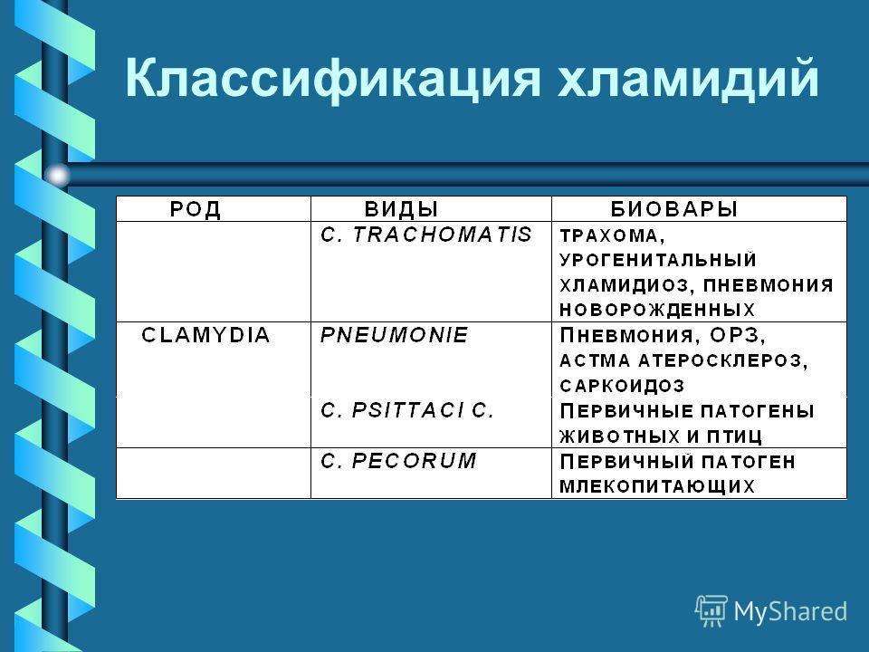 Классификация хламидий