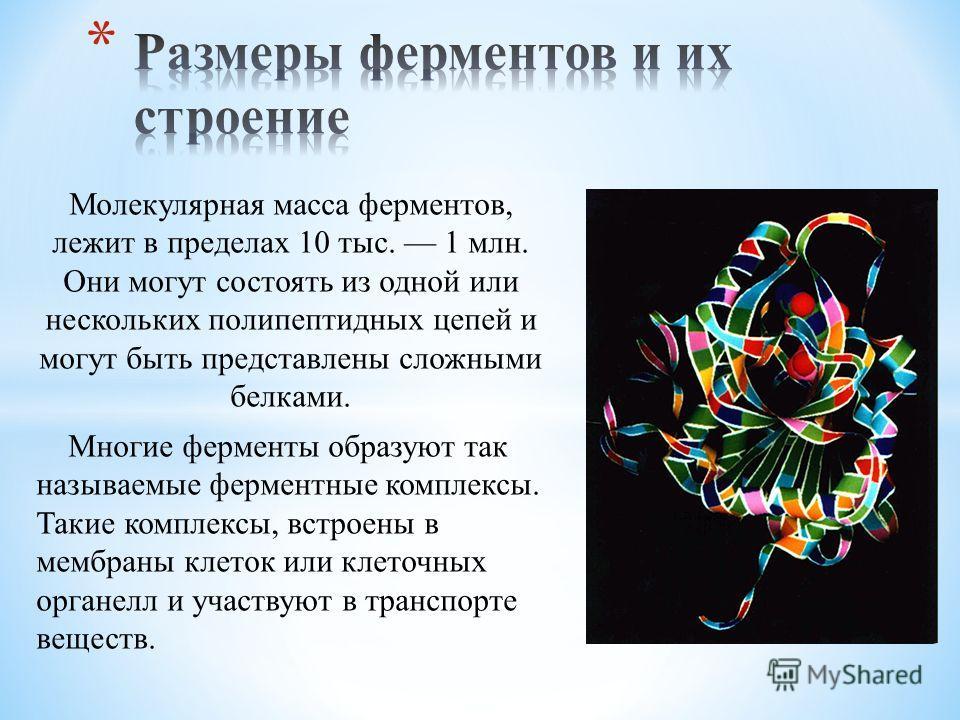 Молекулярная масса ферментов, лежит в пределах 10 тыс. 1 млн. Они могут состоять из одной или нескольких полипептидных цепей и могут быть представлены сложными белками. Многие ферменты образуют так называемые ферментные комплексы. Такие комплексы, вс