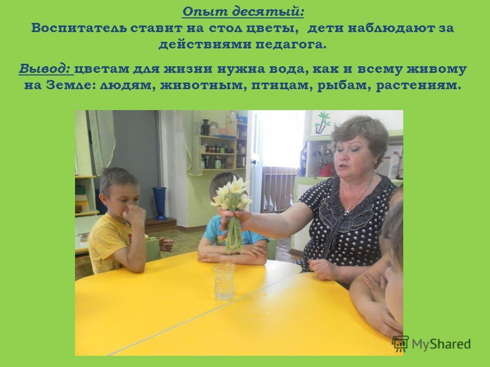 Опыт десятый: Воспитатель ставит на стол цветы, дети наблюдают за действиями педагога. Вывод: цветам для жизни нужна вода, как и всему живому на Земле: людям, животным, птицам, рыбам, растениям.
