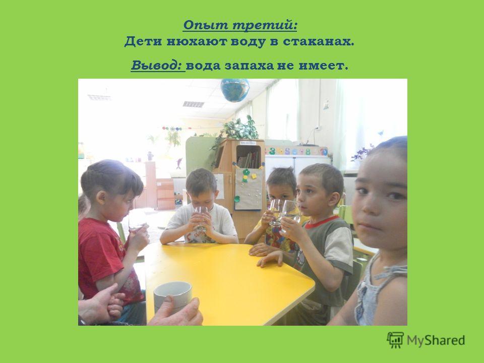 Опыт третий: Дети нюхают воду в стаканах. Вывод: вода запаха не имеет.