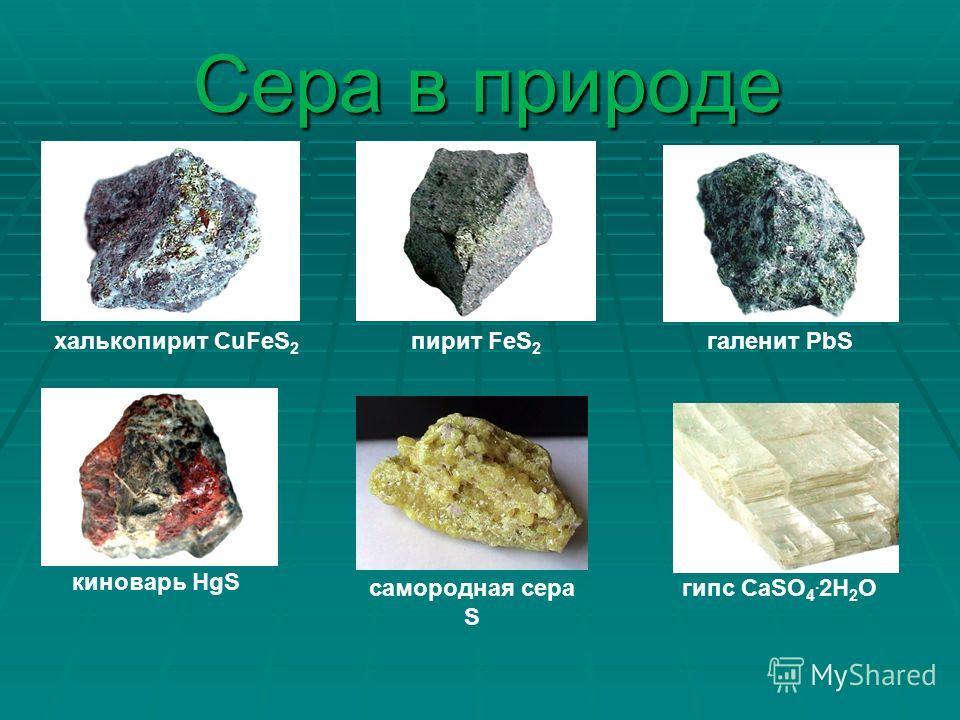 Сера в природе киноварь HgS халькопирит CuFeS 2 галенит PbSпирит FeS 2 самородная сера S гипс СаSO 4. 2H 2 O