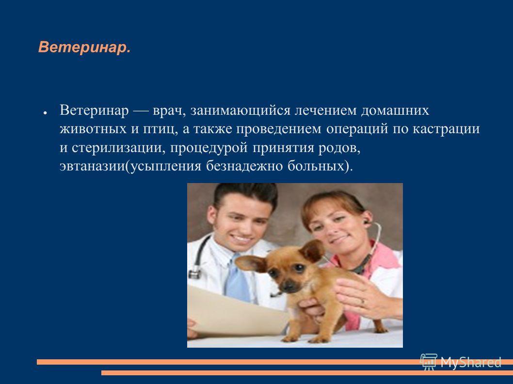 Ветеринар. Ветеринар врач, занимающийся лечением домашних животных и птиц, а также проведением операций по кастрации и стерилизации, процедурой принятия родов, эвтаназии(усыпления безнадежно больных).