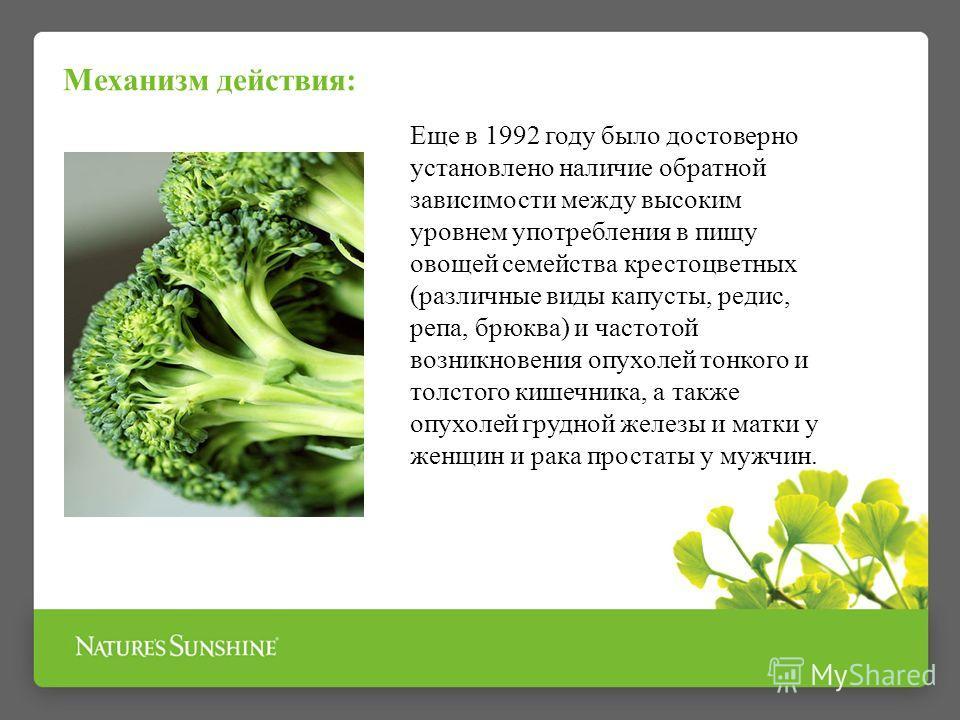 Механизм действия: Еще в 1992 году было достоверно установлено наличие обратной зависимости между высоким уровнем употребления в пищу овощей семейства крестоцветных (различные виды капусты, редис, репа, брюква) и частотой возникновения опухолей тонко