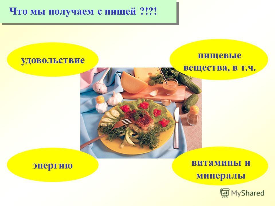 энергиюудовольствие пищевые вещества, в т.ч. витамины и минералы Что мы получаем с пищей ?!?!