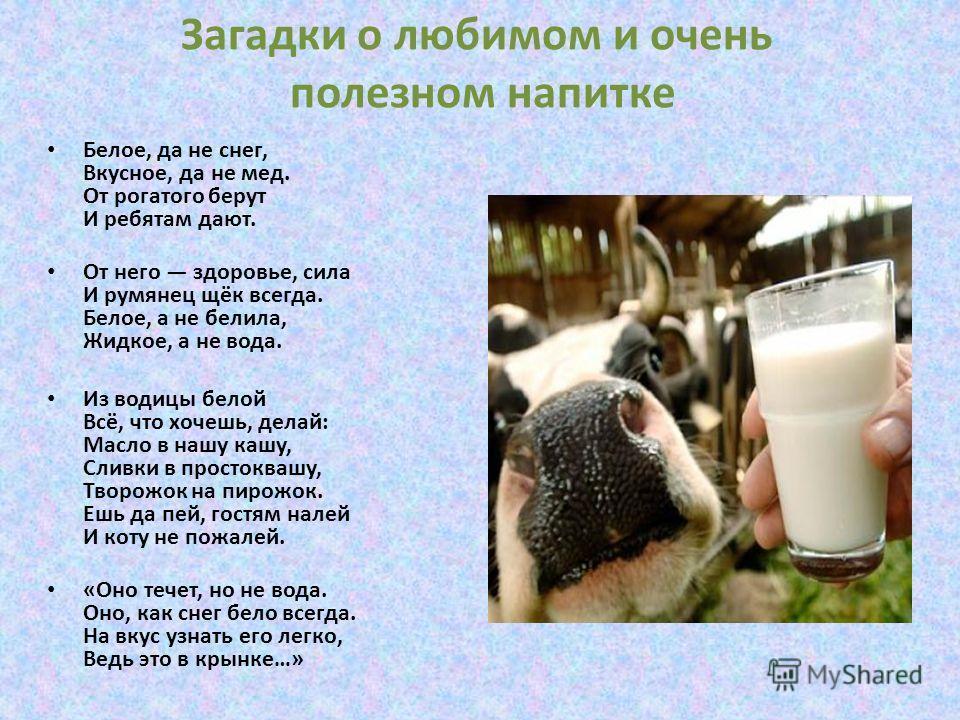 Загадки о любимом и очень полезном напитке Белое, да не снег, Вкусное, да не мед. От рогатого берут И ребятам дают. От него здоровье, сила И румянец щёк всегда. Белое, а не белила, Жидкое, а не вода. Из водицы белой Всё, что хочешь, делай: Масло в на
