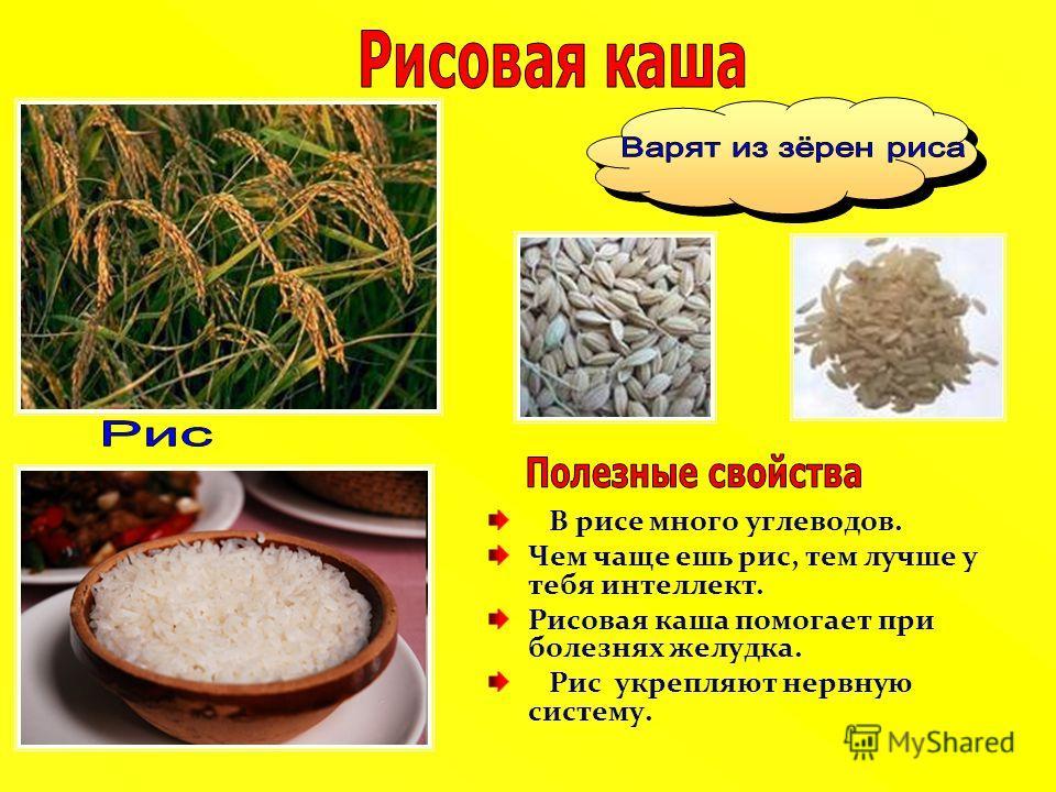 В рисе много углеводов. Чем чаще ешь рис, тем лучше у тебя интеллект. Рисовая каша помогает при болезнях желудка. Рис укрепляют нервную систему.