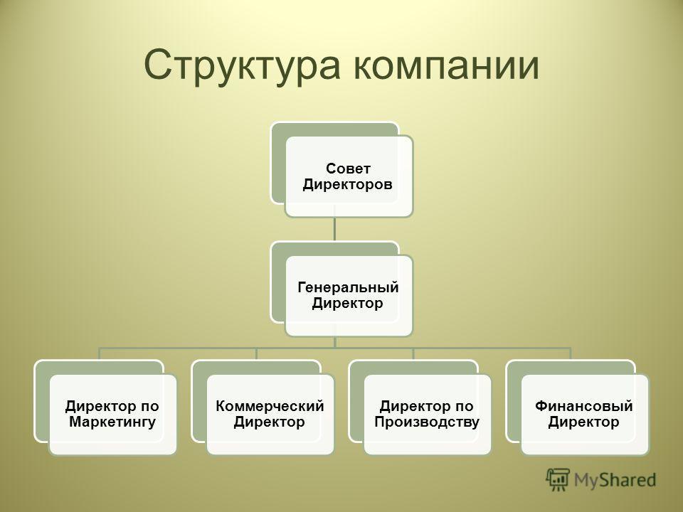 Структура компании Совет Директоров Генеральный Директор Директор по Маркетингу Коммерческий Директор Директор по Производству Финансовый Директор