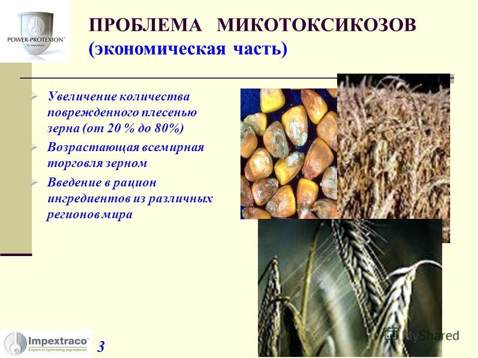 ПРОБЛЕМА МИКОТОКСИКОЗОВ (экономическая часть) Увеличение количества поврежденного плесенью зерна (от 20 % до 80%) Возрастающая всемирная торговля зерном Введение в рацион ингредиентов из различных регионов мира 3