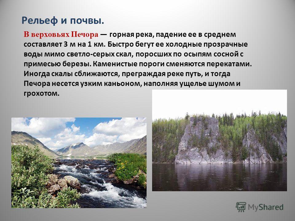 Рельеф и почвы. В верховьях Печора горная река, падение ее в среднем составляет 3 м на 1 км. Быстро бегут ее холодные прозрачные воды мимо светло-серых скал, поросших по осыпям сосной с примесью березы. Каменистые пороги сменяются перекатами. Иногда