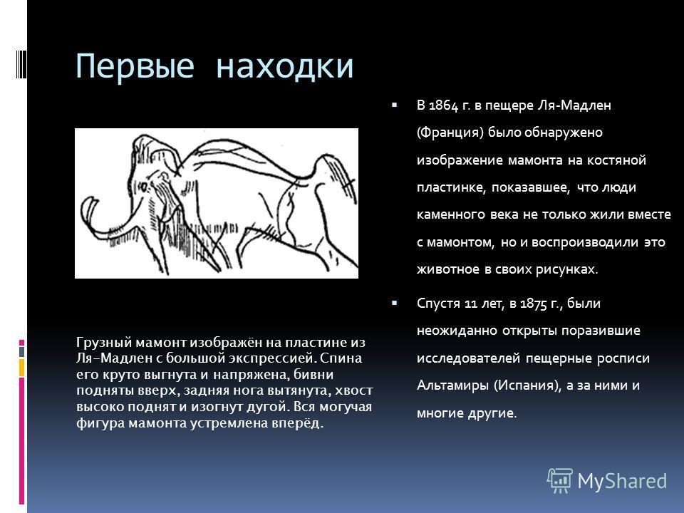 Первые находки В 1864 г. в пещере Ля-Мадлен (Франция) было обнаружено изображение мамонта на костяной пластинке, показавшее, что люди каменного века не только жили вместе с мамонтом, но и воспроизводили это животное в своих рисунках. Спустя 11 лет, в