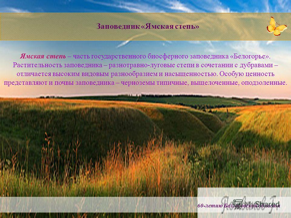 60-летию Белгородской области Заповедник «Ямская степь» Ямская степь – часть государственного биосферного заповедника «Белогорье». Растительность заповедника – разнотравно-луговые степи в сочетании с дубравами – отличается высоким видовым разнообрази